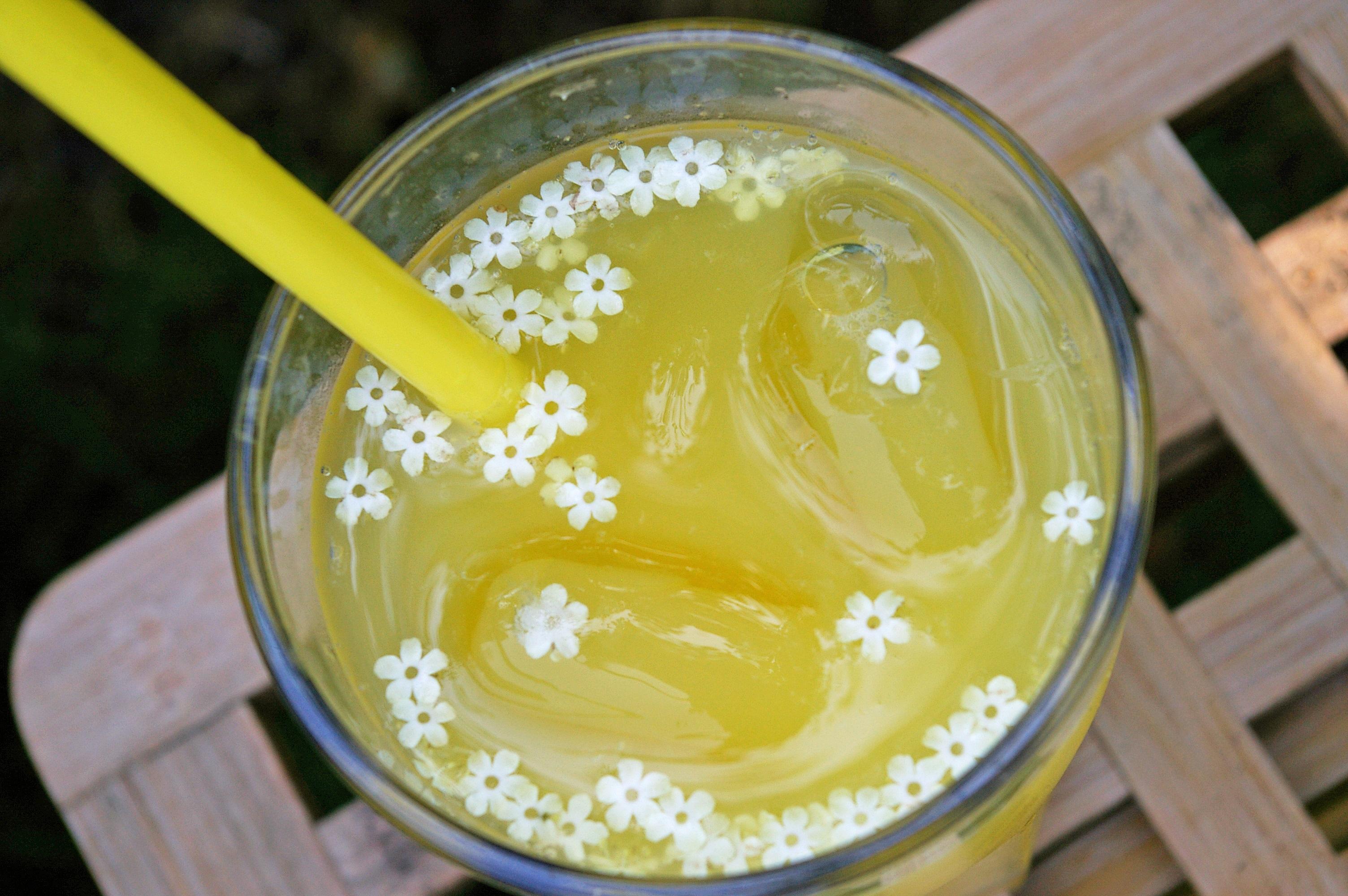 Bomann Kühlschrank Wird Heiß : Gekühlte getränke im sommer genießen gefrierschrank ratgeber